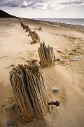 Sandy Beaches Prints - Posts In Sand Print by John Short