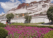 Autonomous Prints - Potala Palace Print by Alan Toepfer