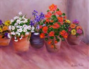 Flowerpots Posters - Pots of Flowers Poster by Jamie Frier
