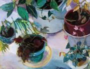 """indoor"" Still Life  Painting Posters - Potted Plants Poster by Diane Ursin"