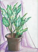 Plants Pastels Prints - Potted Plants Print by Gayatri Ketharaman