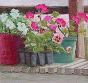 Geraniums Pastels - Potting Bench by Julie Mayser