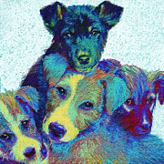 Dogs Digital Art Metal Prints - Pound Puppies Metal Print by Jane Schnetlage