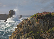 Luis Art - Pounding Waves And Rocky Shoreline by Tim Fitzharris