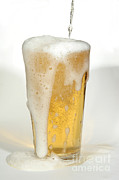 Pour Prints - Pouring Beer Print by Ted Kinsman