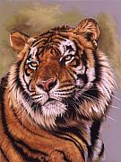 Big Cat Pastels Posters - Power and Grace Poster by Barbara Keith