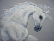 Horse Art Pastels Pastels Prints - Power and Presence Print by Diana Cochran