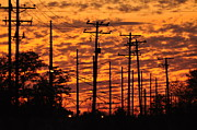 Telephone Lines Framed Prints - Power Lines 2 Framed Print by Peter  McIntosh