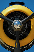 Airplane Radial Engine Prints - Power on the Wing Print by Murray Bloom