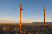 Scrub Brush Prints - Power Poles in The Desert Print by Dave & Les Jacobs