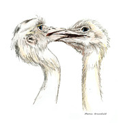 Birds Drawings - Power Struggle by Mamie Greenfield