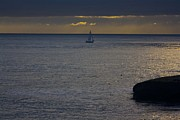 Santa Cruz Sailboat Art - pr 237 - Evening Sail by Chris Berry