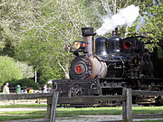 Grey Pyrography Posters - pr 32 - Roaring Camp Railroad  Poster by Chris Berry
