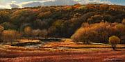 Landscape Drawings Posters - Prairie Autumn Stream No.2 Poster by Bruce Morrison