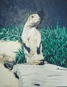 Prairie Dog Originals - Prairie Dog by Terry Forrest