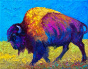 Bison Art - Prairie Dusk by Marion Rose