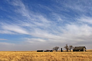 Landscape Print Prints - Prarie House Print by Peter Tellone