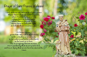 Francis Photo Framed Prints - Prayer of St. Francis of Assisi Framed Print by Bonnie Barry
