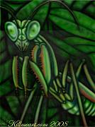 William Burns - Praying Mantid