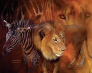 African Lion Art Framed Prints - Predator and Prey Framed Print by Carol Cavalaris