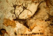 Rock Wall Posters - Prehistoric Artists Painted A Red Deer Poster by Sisse Brimberg