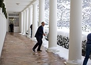 2000s Posters - President Obama In A Snowball Fight Poster by Everett