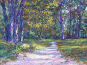 Shadows Paintings - Presque Isle Path by Michael Camp