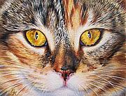 Cats Painting Metal Prints - Pretty Alice Metal Print by Elena Kolotusha