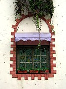 Pretty Decorated Window Print by Yali Shi