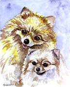 Pomeranian Framed Prints - Pretty Pom Pair - Pomeranian Framed Print by Lyn Cook