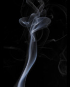 Smoke Art Prints - Preying Mantis Print by Bryan Steffy