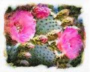 Aj Hansen Framed Prints - Prickly Pear Framed Print by Arne Hansen