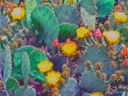 Cacti Digital Art Prints - Prickly Pear Cactus 2 Print by Methune Hively
