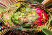 Pears Digital Art Originals - Prickly Pear Rounder by Russel Ray