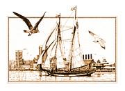 Harbor Drawings - Pride of Baltimore by John D Benson