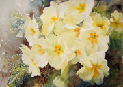 Primroses Paintings - Primrose Posy by Ruth Harris