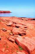 Sea And Sky Posters - Prince Edward Island National Park Poster by Thomas R Fletcher