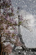 Tree Blossoms Prints - Printemps Parisienne Print by Joachim G Pinkawa