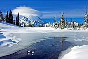Mt Rainier Photos - Pristine by Mike  Dawson