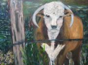 Bulls Mixed Media Originals - Prize Bull by Bernice Camenisch