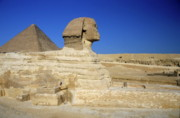 Great Sphinx Framed Prints - Profile of the Great Sphinx with the Great Pyramid of Giza in the background Framed Print by Sami Sarkis