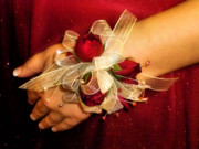 Winter Wedding Flowers Photos - Prom Corsage by Karen M Scovill