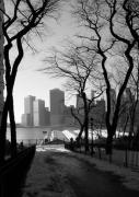 Manhattan Prints - Promenade Trees Print by Christopher Kirby