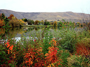 Yakima Valley Framed Prints - Prosser Autumn River with Hills Framed Print by Carol Groenen