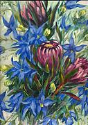Aileen McLeod - Protea and Blue