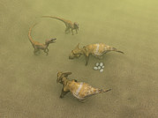 Defending Metal Prints - Protoceratops Dinosaurs Defending Eggs Metal Print by Christian Darkin
