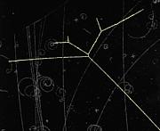 Proton Tracks Print by Lawrence Berkeley National Laboratory