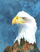 Bald Eagle Painting Framed Prints - Proud Eagle Framed Print by Arline Wagner