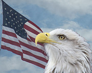Eagle Metal Prints - Proud Metal Print by Ernie Echols