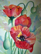 Collier Painting Posters - Proud Poppies Poster by Sandy Collier